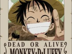 Monkey D. Luffy (Ruffy)