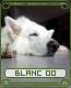 blanc04dbdpl.png
