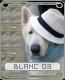 blanc03s5dvr.png