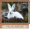 master032mk6c.png